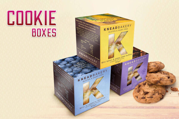 Cookie Boxes for securing your cookies